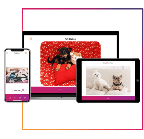 petcam app, petcamapp, haustier kamera app, hundemonitor app, macos, windows, iOS, android, apple, google play