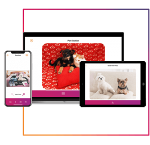 petcam app, petcamapp, câmera pet, monitoramento para cachorro, macos, windows, iOS, android, apple, google play